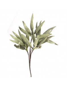 Felce Di Giava - I Fiori L' Oca Nera - 1P118 - L' Oca Nera - Fiori Decorativi