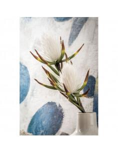 Callistemone Bianco - I Fiori L' Oca Nera - 1P120 - L' Oca Nera - Fiori Decorativi