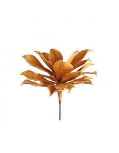 Magnolia Gigante Avio - I Fiori L'Oca Nera